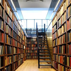 Библиотеки Сараев